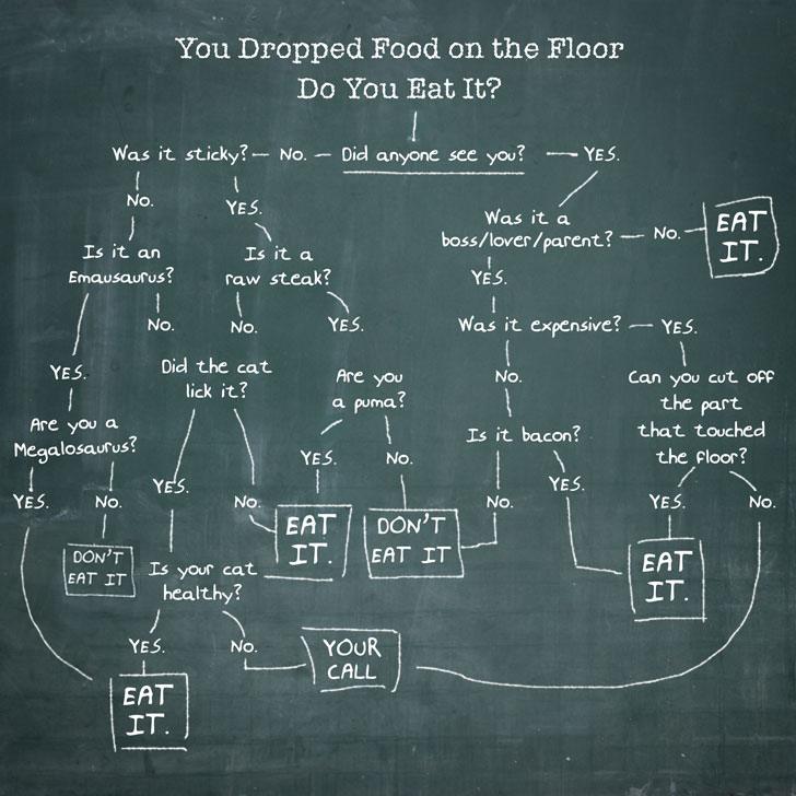 food drop on the floor infographic