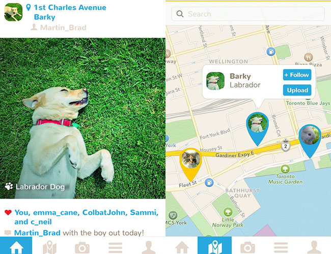 In addition to sharing photos, Petfie allows your pets to be geo-tagged.