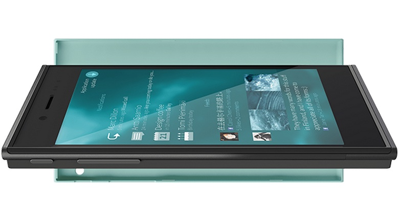 Jolla's Beauty is Sheer Joy (Image from: Wikipedia)