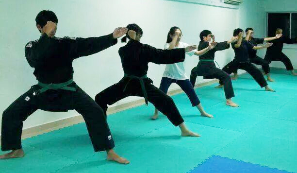 singapore ninjutsu training