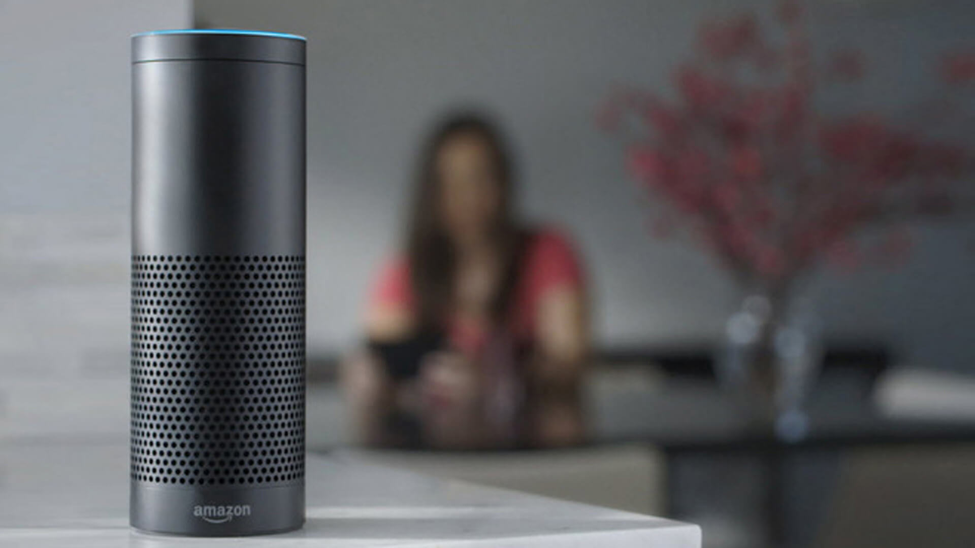 Image Credit: Amazon Echo