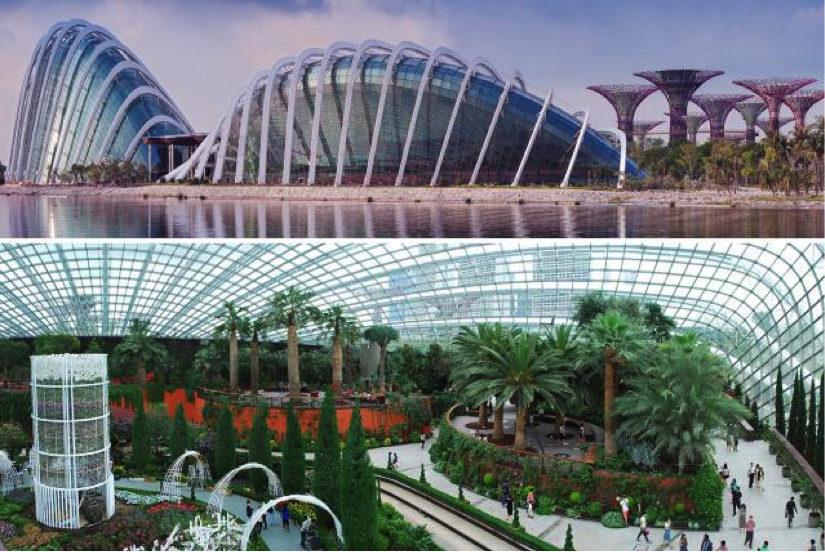Image Credit: Gardens by the bay