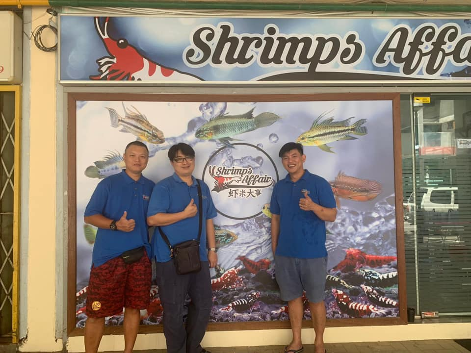 Shrimps Affair Shop