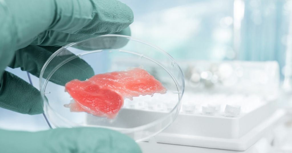 stem cell meat